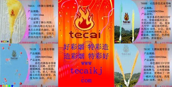 tecaikj.com造彩烟特彩好