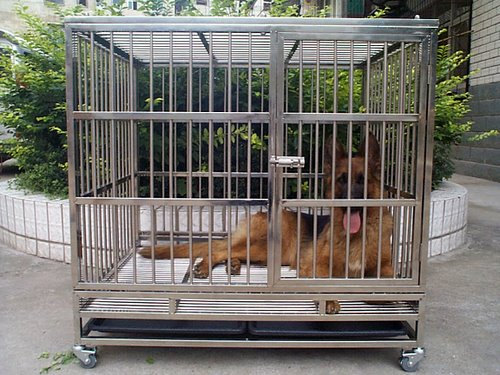超大型犬链子 自制大型犬狗笼图片 大型犬狗笼子设计图