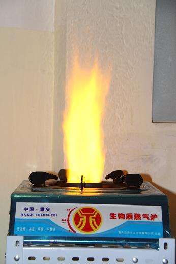 生物燃料生物燃油生物柴油