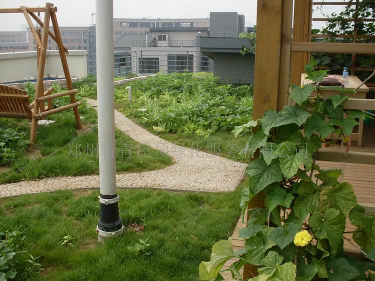 别墅,楼顶花园设计