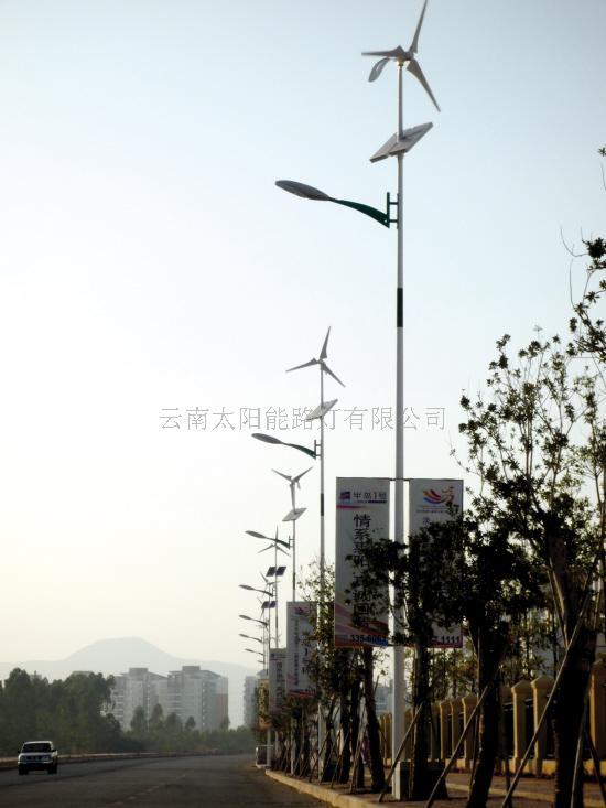 云南路灯云南太阳能路灯云南路灯厂家 云南昆明太阳能图片